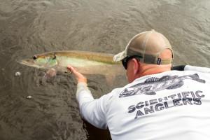 michigan fishing guide