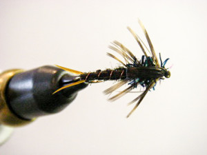 black stone fly nymph
