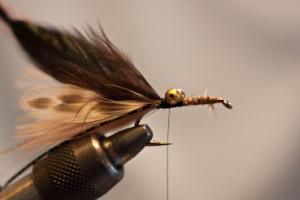 carp crayfish fly